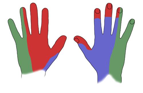 немеет средний и безымянный палец Диагностика заболеваний по руке