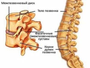 Увеличение лимфоузла на шее с одной стороны у взрослого причины и лечение