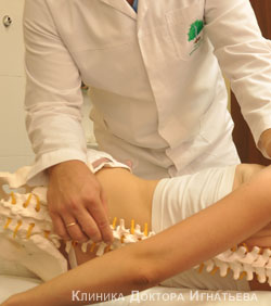 Народные средства лечения перелома позвоночника