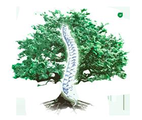 Клиника доктора Игнатьева