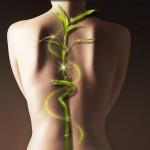 Шпильки, как угроза здоровью, изображение 2 - spine5.com