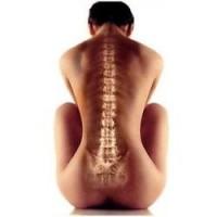 Правильное питание для позвоночника, изображение 1 - spine5.com